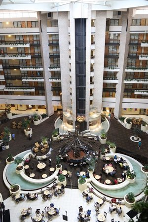 Embassy Suites by Hilton Orlando International Drive Jamaican Court: Elevadores panoramicos !