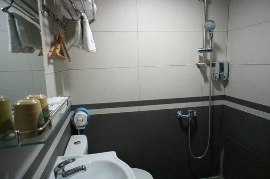 Star Metro Hotel: バスルーム