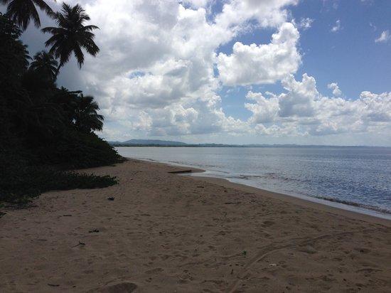 Rincon Beach Resort: Perfect Sunset