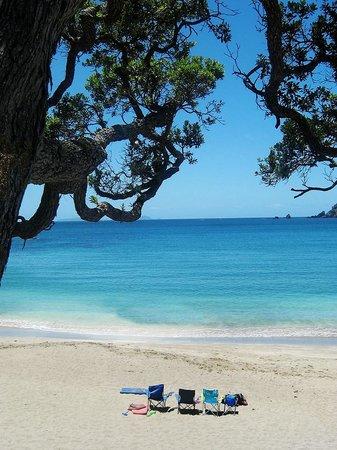 Whananaki Holiday Park: Nearby Moureeses Bay