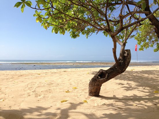 Nusa Dua Beach : relaxing at nusa dua