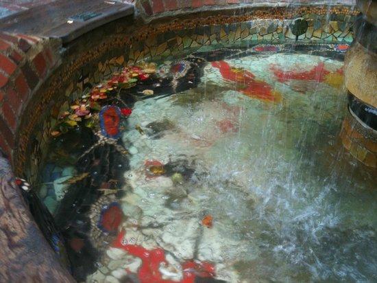 Hundertwasserhaus: 8