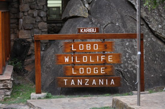 Lobo Wildlife Lodge: lobo lodge