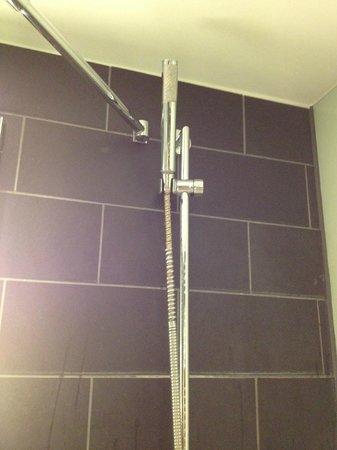 Scandic Palace Hotel: Der Duschschlauch - später war er ganz ab