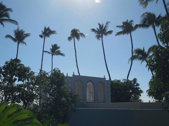 Shangri La: Sunshine and Palm Trees on Oahu