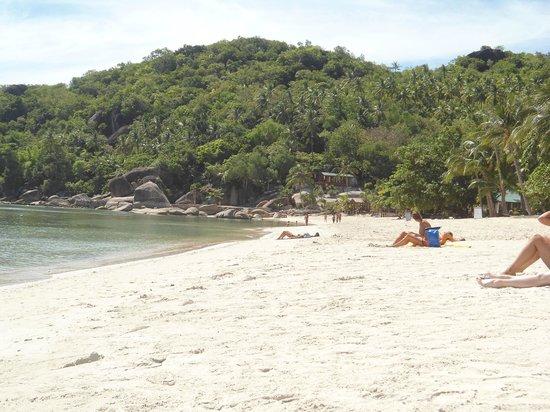 Thong Takhian Beach (Silver Beach) : beach