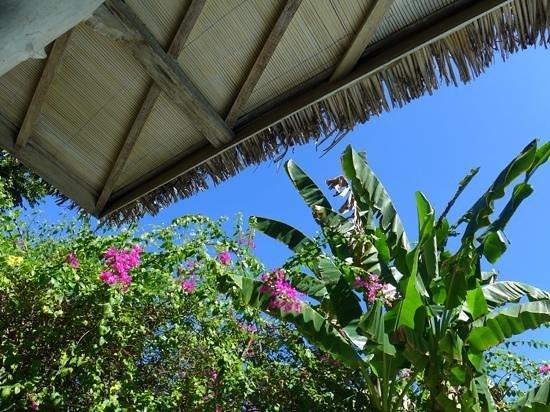 Les Villas Ottalia: french tropical flair