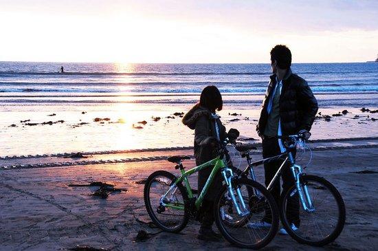 Kamakura Miracle Cycling Tours: Kamakura cycling tours