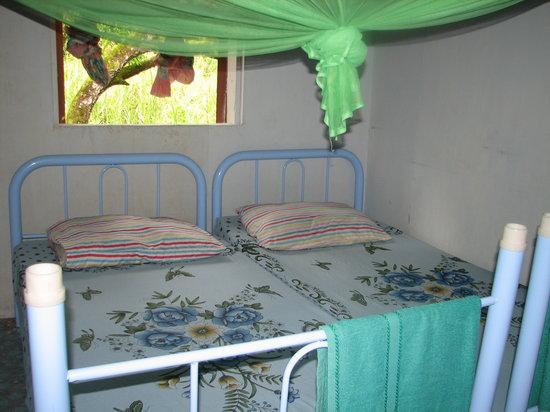 Sukau, Malaysia: room at the homestay