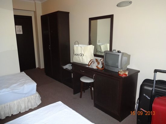 Arora Hotel: Room 2