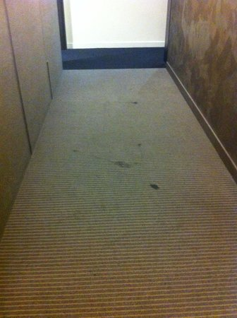 Seasons Heritage Melbourne: carpet stains in the hall near elevators