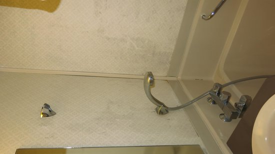 Select Inn Fujisan Gotemba: Filthy bathroom wall