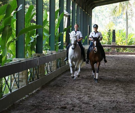 Arthayasa Stables & Country Club