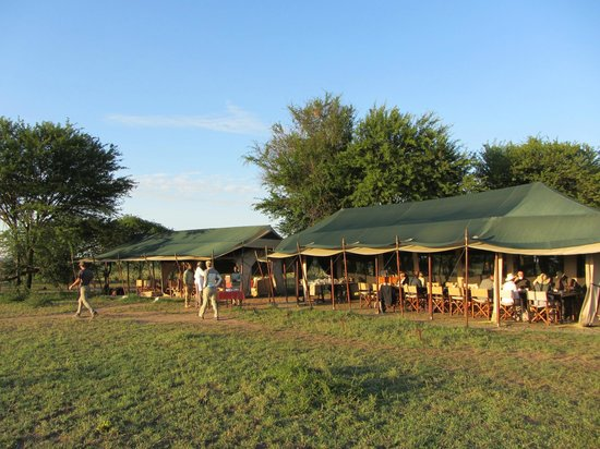 Olakira Camp, Asilia Africa: Early morning biz