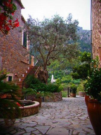 Hostal Villa Verde: Innenhof