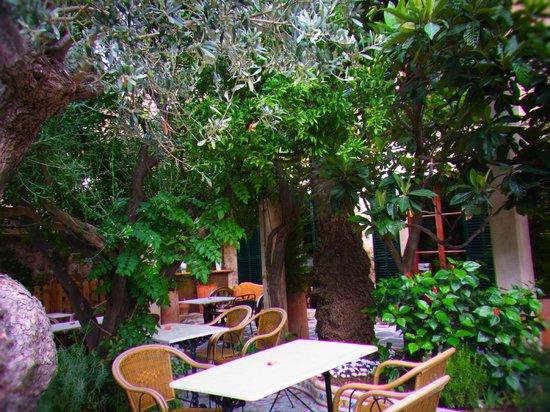 Hostal Villa Verde: Frühstücksterrasse