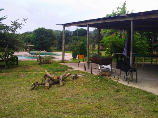 Woody Cape Nature Lodge: The bar overlooking the pool!