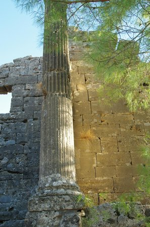 Seleukia (Lybre): Doric detail