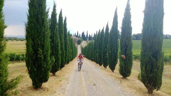 San Gusme, Włochy: Enviorment
