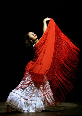 Ballet Flamenco de Madrid