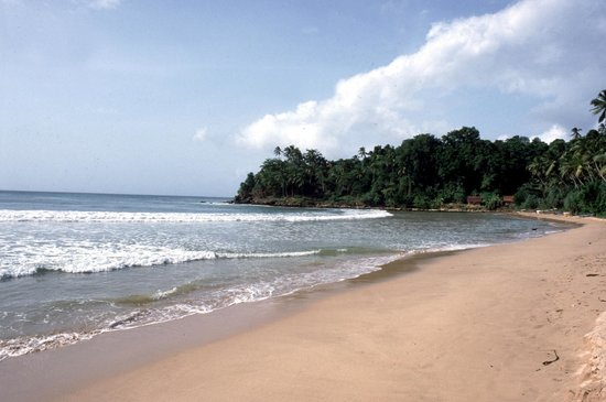 Surya Lanka Ayurveda Beach Resort: Beach