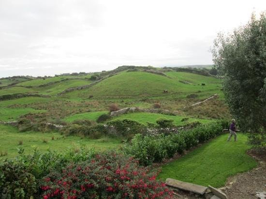 Deerpark House: the rolling hills outside the front.