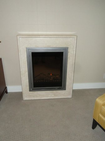 L'Hermitage Hotel: An electric fireplace