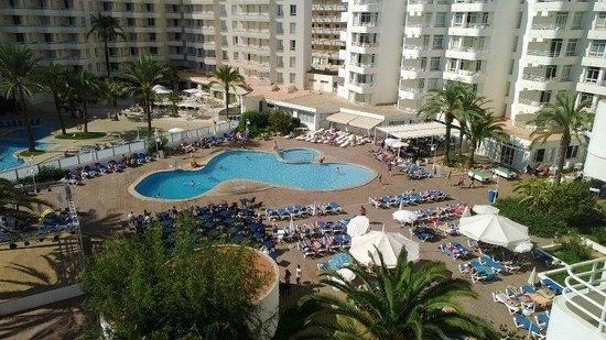 Hotel Palia Sa Coma Playa: The yard
