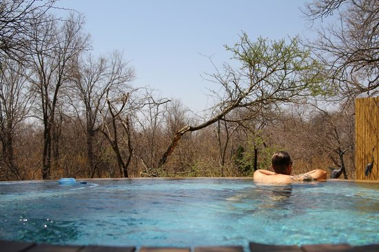 Refreshing pool at Tambuti Lodge