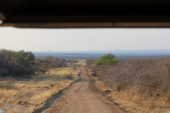 Tambuti Lodge : Meandering down the jeep track in the Black Rhino Reserve