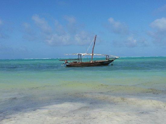 Kichanga Lodge : vue de la plage