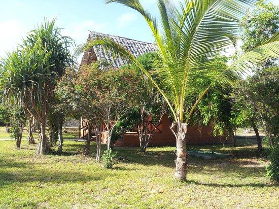 Kichanga Lodge : bungalow