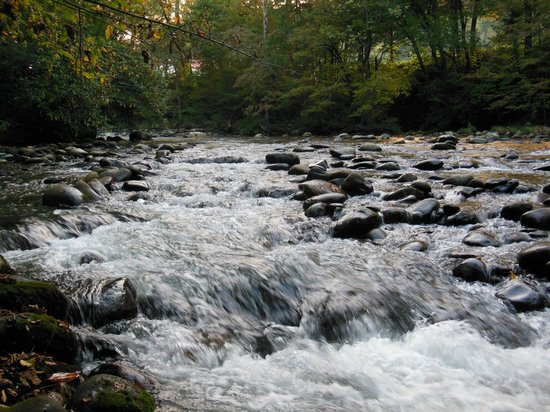 Greenbrier Campground : Little Pigeon River right at our campsite