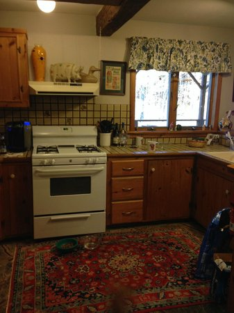 Phineas Swann Bed and Breakfast Inn: Kitchen in Suite