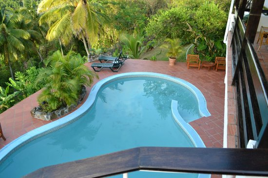 Marigot Palms Luxury Caribbean Guesthouse and Apartments: Pool