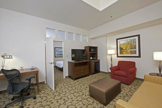 Hilton Garden Inn Indianapolis Downtown: Suite living space