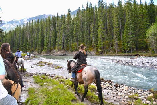 Buffaloberry Bed and Breakfast: Went for a great ride through Banff