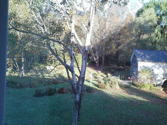 Seth Warner Inn: Backyard