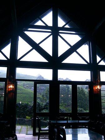 Mackwoods Labookellie Tea Centre: 一面の窓から茶畑が眺められます