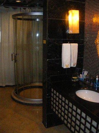 Merlinhod Hotel: shower