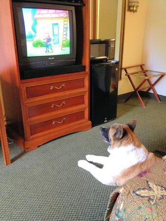 Days Inn Rutland/Killington Area: not a flat panel TV