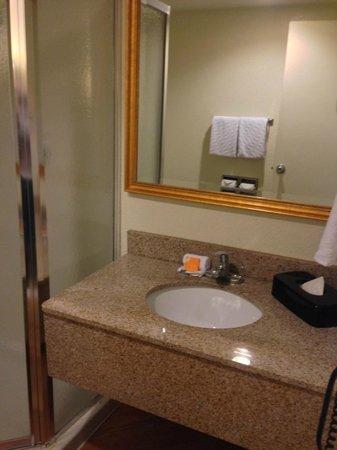 La Quinta Inn Minneapolis Airport Bloomington: Bathroom 1