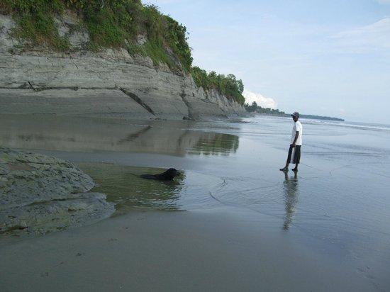 Papagayos Beach Hotel: Побережье Тихого Океана