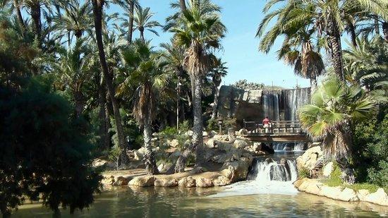 Parque El Palmeral: General View