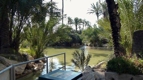 Parque El Palmeral: Boating Lake
