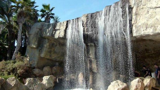 Parque El Palmeral: Waterfall