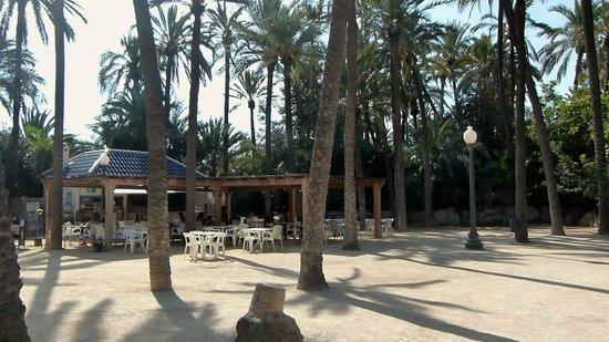 Parque El Palmeral: Cafe/Snack Bar Area