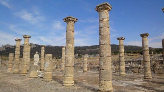 Conjunto Arqueológico Baelo Claudia: Basilica