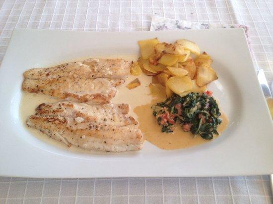 Culinarium: Levrek-seabass