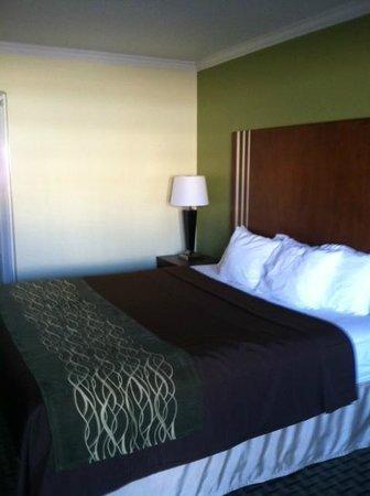 Comfort Inn & Suites Austintown : nice decor